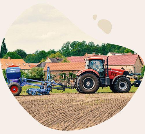 ökologischer Ackerbau für Bio-Futtermittel